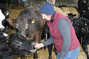 catherine with cows 1